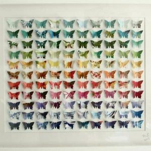 Spectrum Butterflies